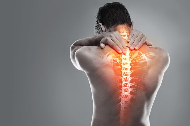 Back Exercise Stretches for Back Pain