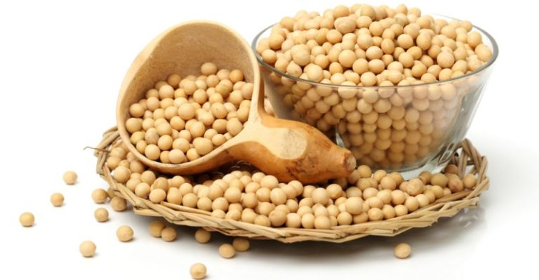 Read more about the article The Benefits of Soy