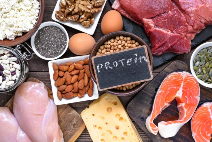 Weight loss Tips – Part 8 – The Magic Bullet of Protein