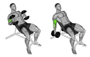Read more about the article Weight loss Tips – Part 21 – Exercise Descriptions – Biceps Continued